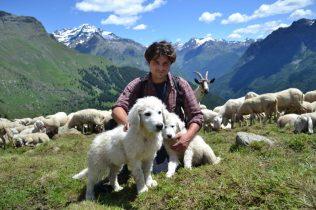 cropped-balduzzi-christian-e-2-cuccioli-di-pastore-maremmano-abruzzese.jpg